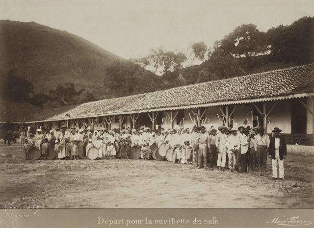 Partida para colheita do café. Vale do Paraíba, c. 1885. Foto de Marc Ferrez. Coleção Gilberto Ferrez / Acervo IMS