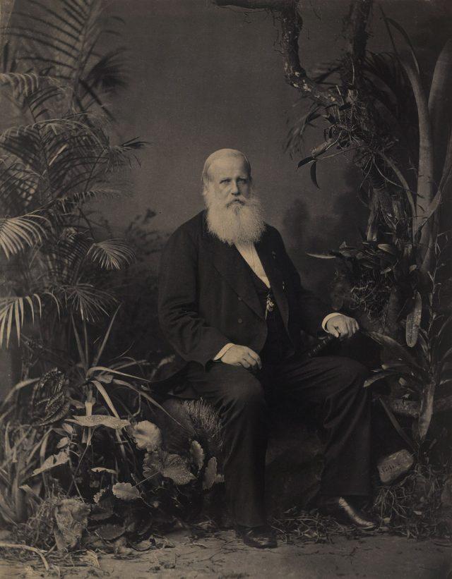 D. Pedro II, Imperador do Brasil: retrato, 1883. Foto de Joaquim Insley Pacheco / Acervo FBN