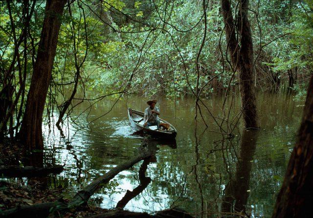 Expedição ao Rio Negro com Paulo Vanzolini e Geraldo Sarno, 1975, Amazônia. Foto de Thomaz Farkas © Thomaz Farkas State/ Acervo IMS